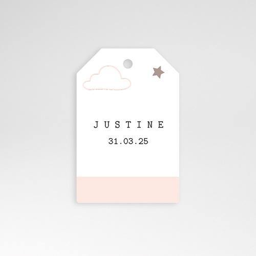 Etiquette Cadeau Naissance Nuage, étoile, bande rose, 6x4