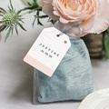 Etiquette Cadeau Naissance Nuage, étoile, bande rose, 6x4 gratuit