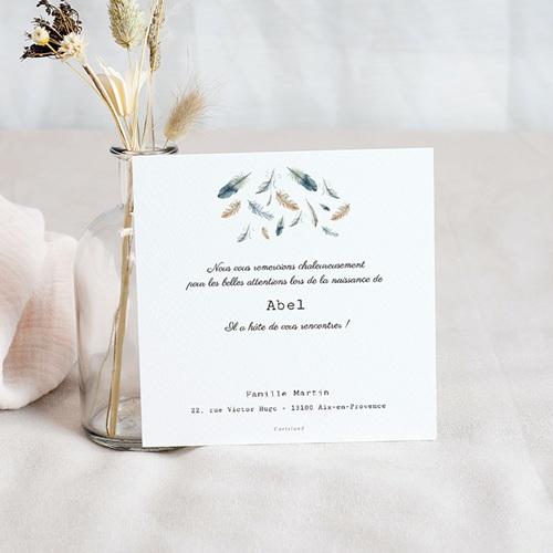 Carte Remerciement Naissance Garçon Plumes Aquarelle, 1 Photo pas cher