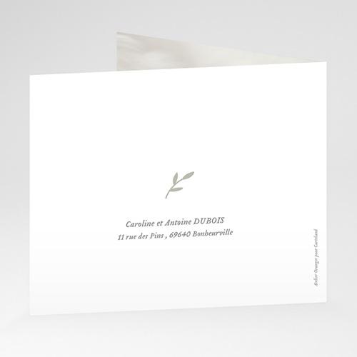 Carte Remerciement Naissance Garçon Brin de bonheur, Vert tendre, pli-décalé gratuit