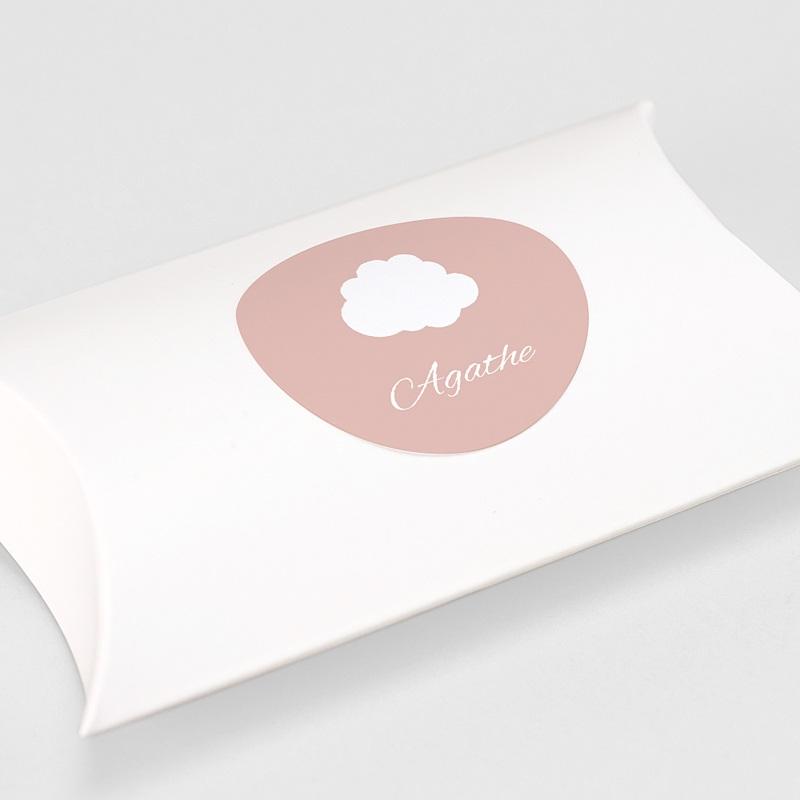 Etiquette Autocollante Naissance Sticker, Petite Princesse en avion, rose gratuit
