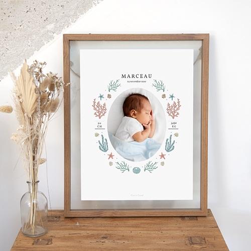 Affiches Danse de Bébé, Coraux & étoiles de mer, 30 X 40 cm
