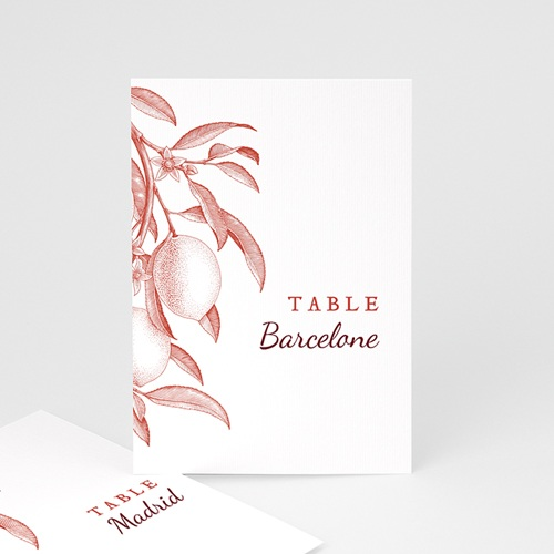 Marque Table Mariage Gravure Monochrome, Citrons Rouge Vintage, Lot de 3