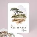 Papeterie Faune sauvage, Animaux d'Afrique, Lot de 12