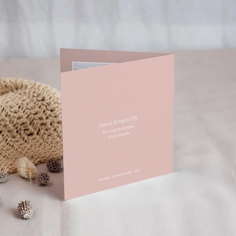 Carte Remerciement Naissance Le Petit Prince Petite Princesse en avion, rose, Photo gratuit