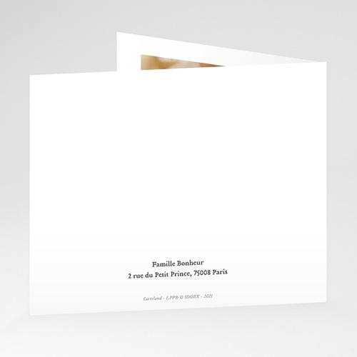 Carte Remerciement Naissance Le Petit Prince Le renard du Petit Prince, pli-décalé gratuit