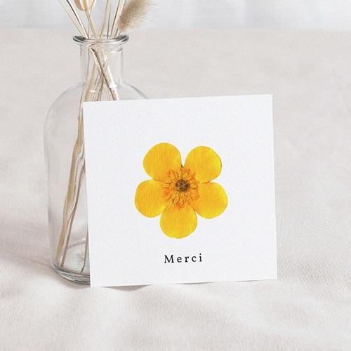 Carte Remerciement Naissance Herbier du Soleil, 10 x 10 cm