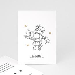 Carte Invitation Anniversaire - Manège d'éléphants - 0