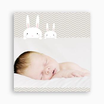 faire-part naissance lapin