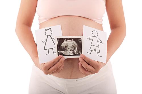 foetus semaine 9