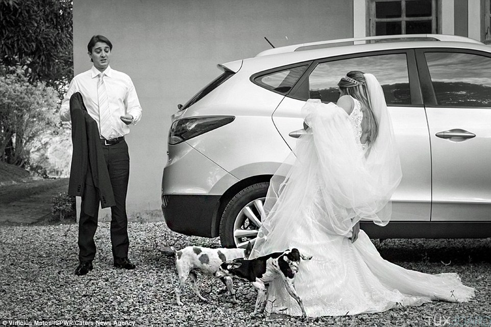 photo-mariage-pipi-chien
