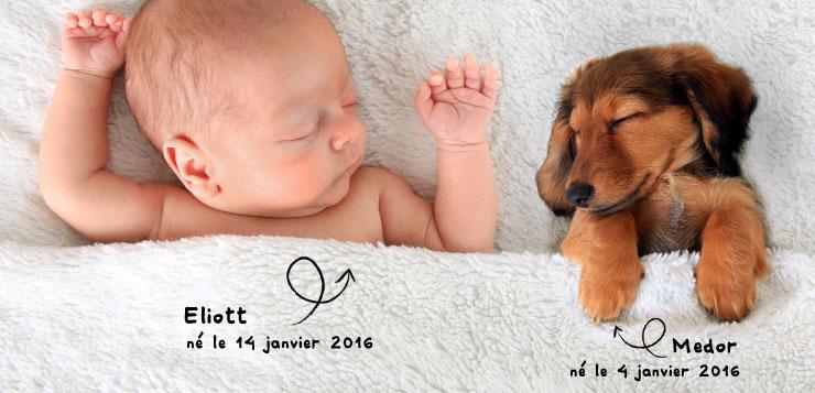 bébé et bébé chien sous la couette